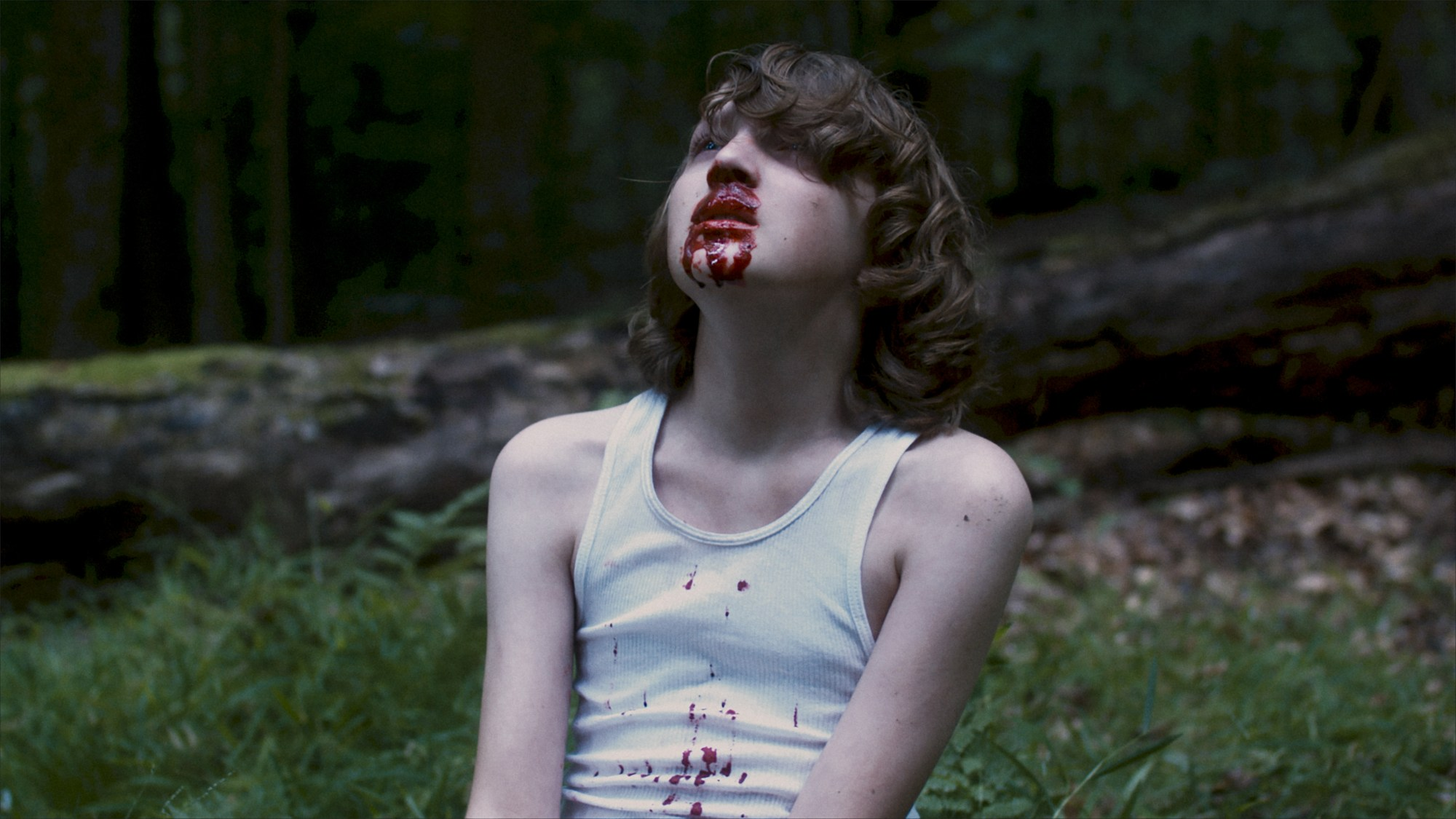 Desolation in Bloody Disgusting